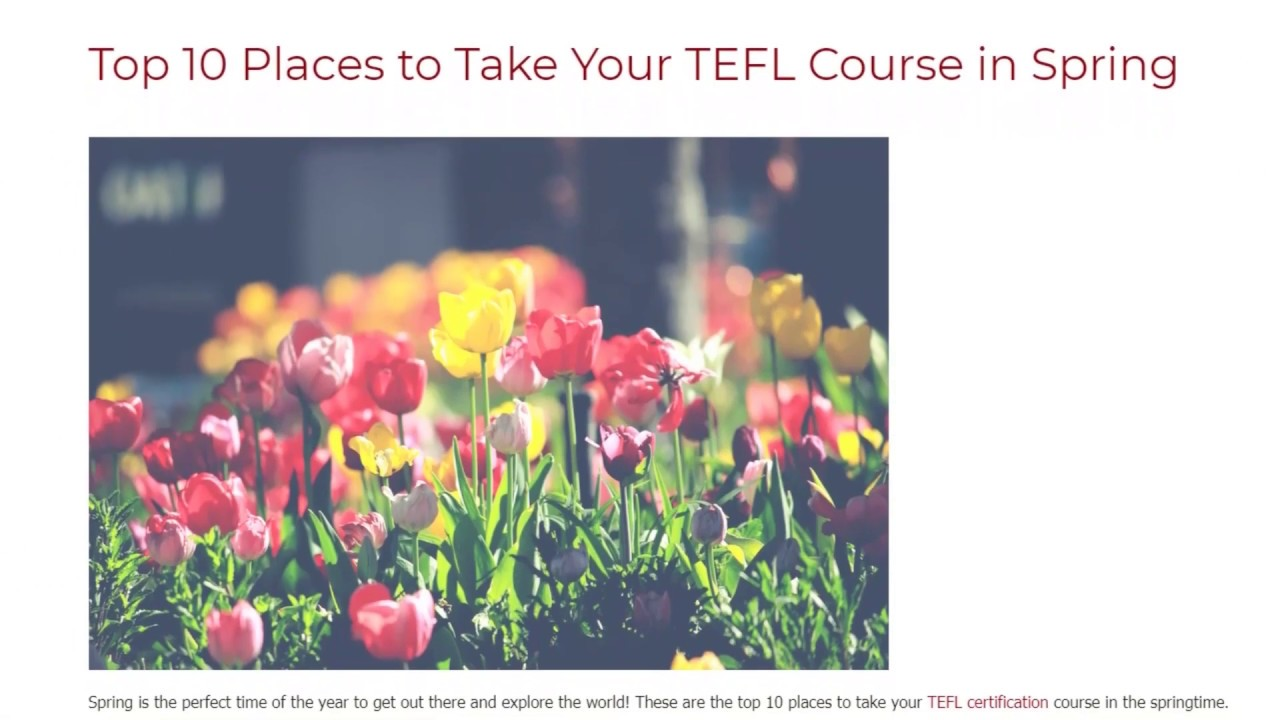 Top 10 Places to Take Your TEFL Course in Spring | ITTT TEFL BLOG