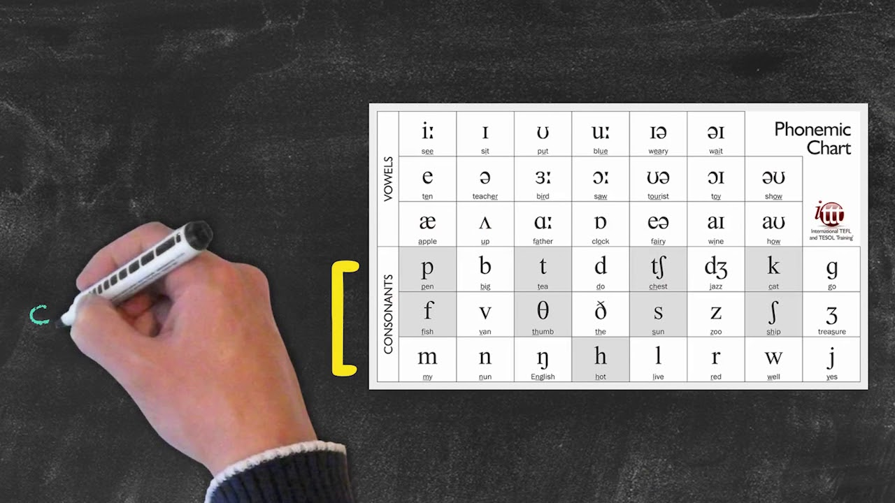 Pronunciation and Phonology in the EFL Classroom – Issues with the International Phonetic Alphabet