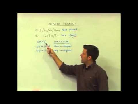 English Grammar — Present Perfect — Structure 2 —