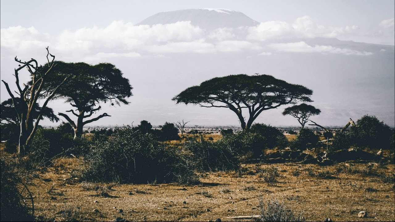 Etiquette Rules in 4 Different African Countries   ITTT   TEFL Blog