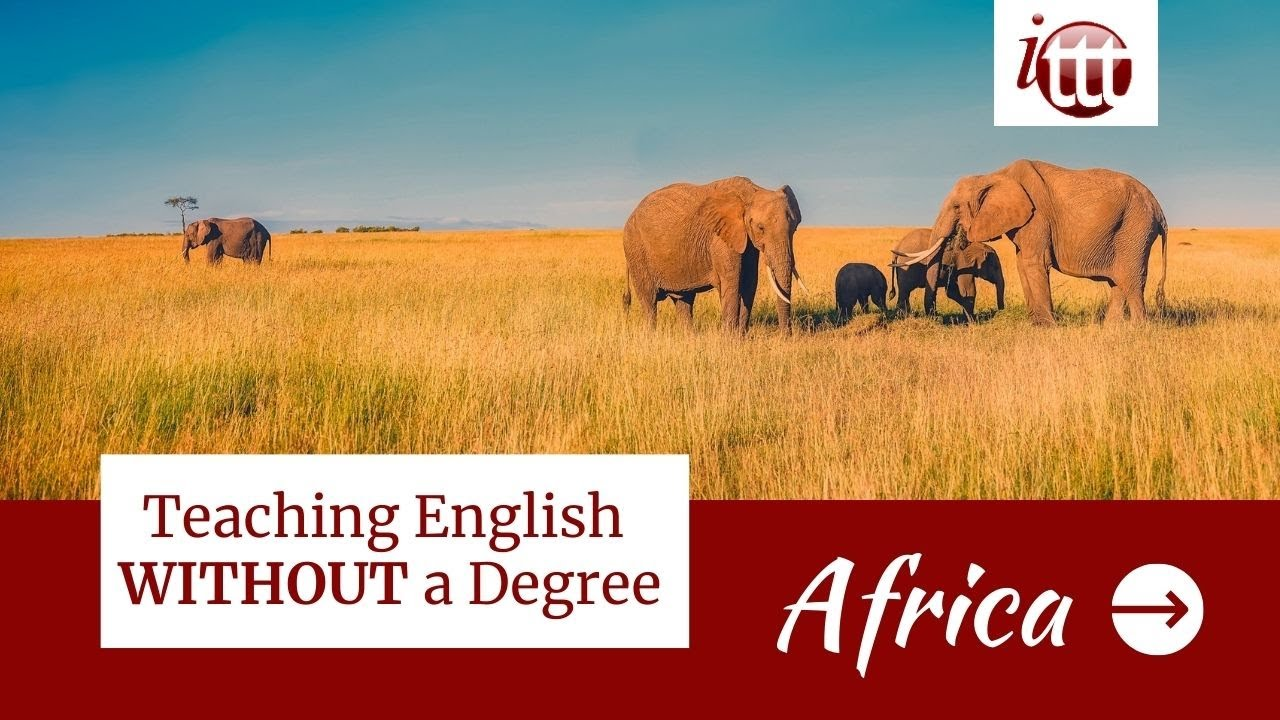 Teaching English in Africa Without a Degree