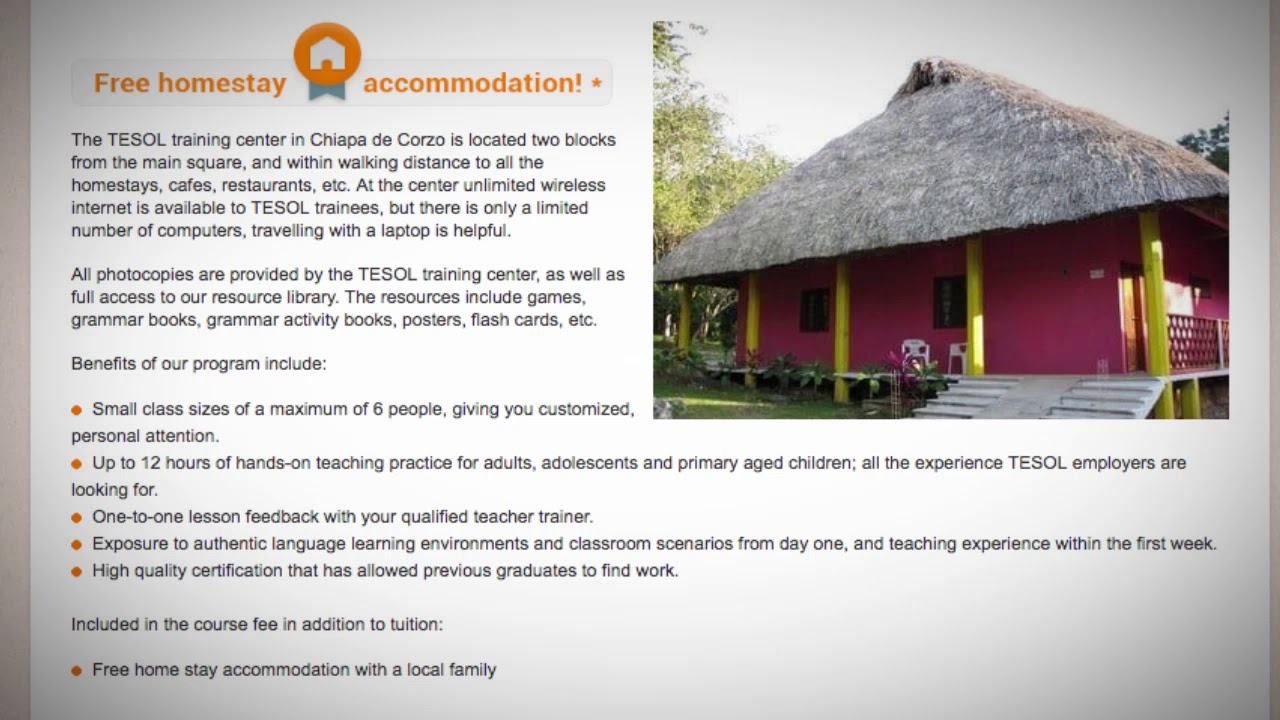 Welcome to Our TESOL School in Chiapas, Mexico | Teach & Live abroad!