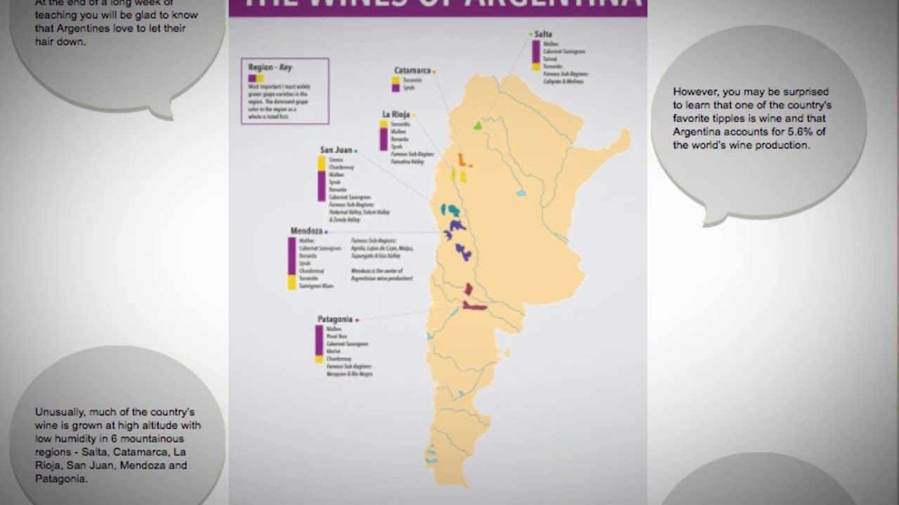 What are the best wines from Argentina?