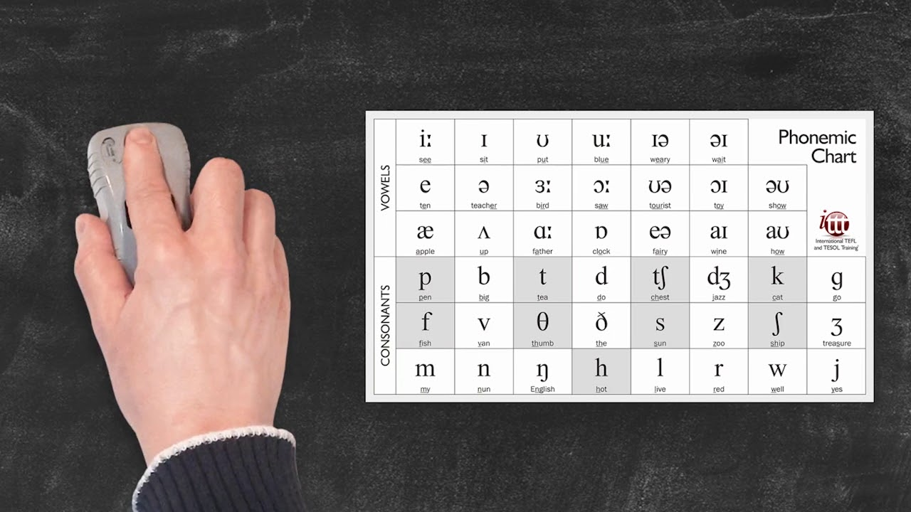Pronunciation and Phonology in the EFL Classroom – Phonemes