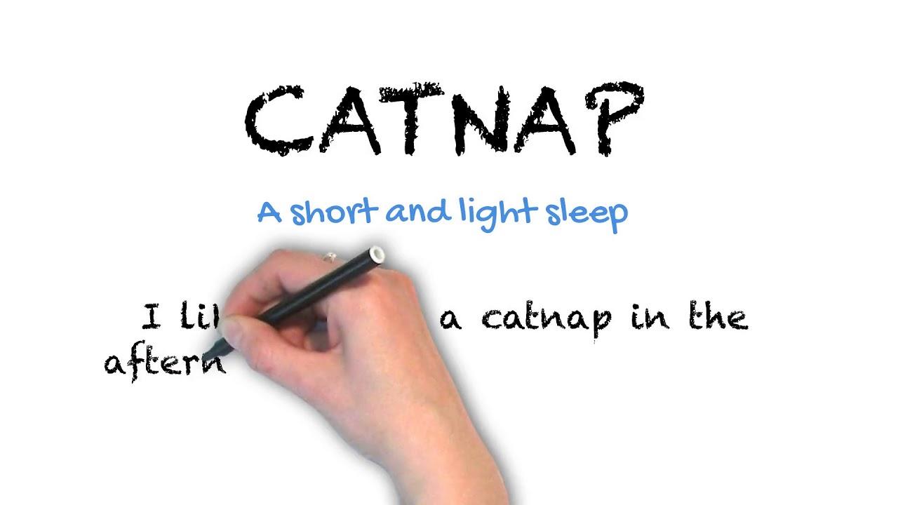 Catnap   Ask Linda!   Idioms